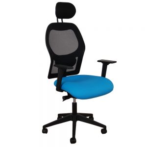 BAL804 with headrest and adjustable arms